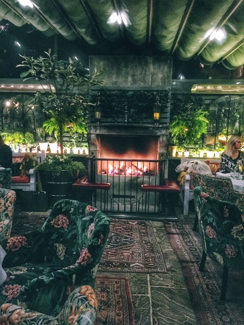 Cozy @ The Ivy