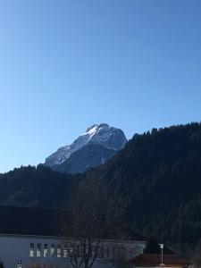 Austrian Alps Views