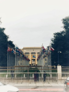 Member State Flags at the United Nations Entrance
