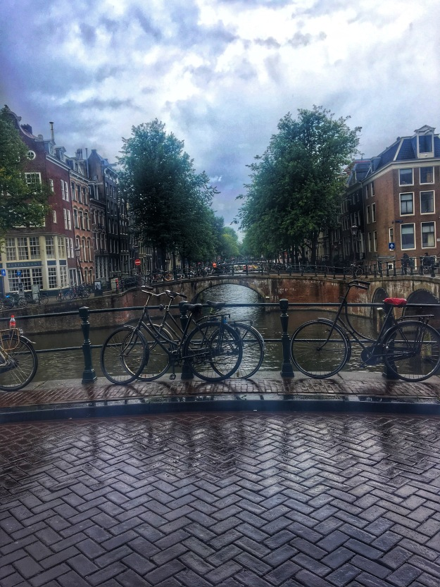 Canal gazing