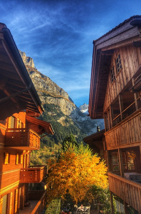 Fall in Grindelwald