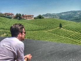 Simon in Vineyard