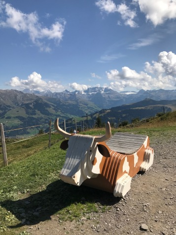 Cow Playground Gstaad
